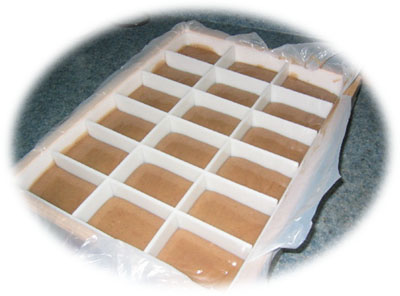 Mold With Dividers